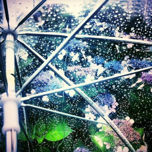 梅雨対策❗️