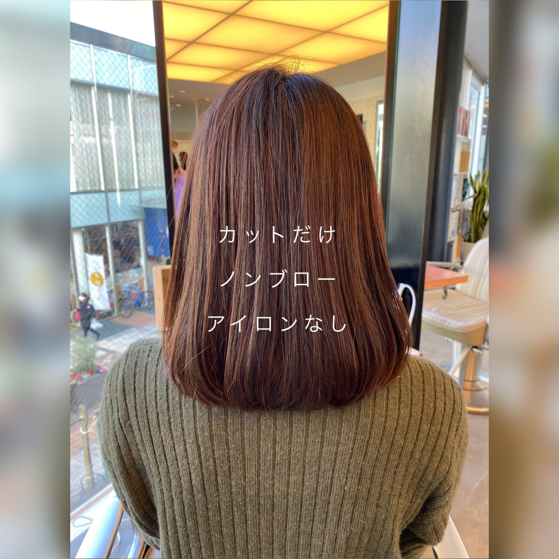 髪を理解する